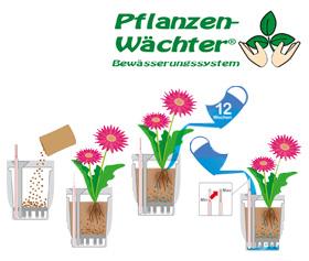 Produkte AHG Hamm Haushaltswaren Pflanzenwächter